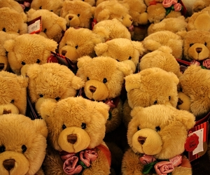 bear, shopping, and teddy image