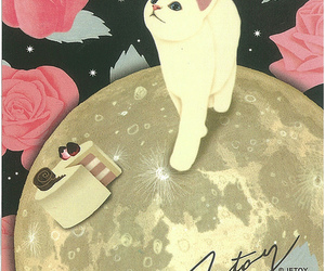 cat, postcard, and jetoy image