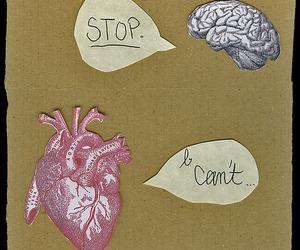 heart, love, and brain image