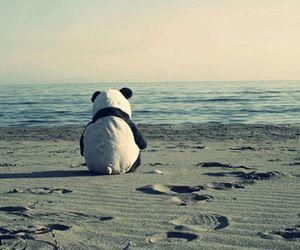 panda, beach, and alone image