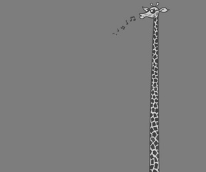 giraffe, bike, and animal image