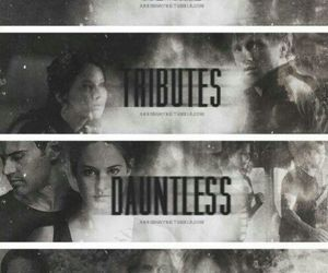 divergent, tribute, and dauntless image