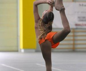 dedication, sport, and training image