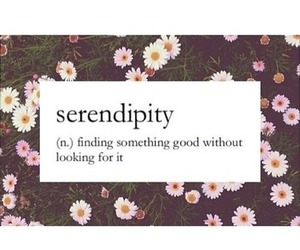 quote, serendipity, and flowers image