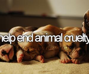 animal, help, and bucket list image