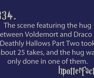 cool, fact, and harry potter image