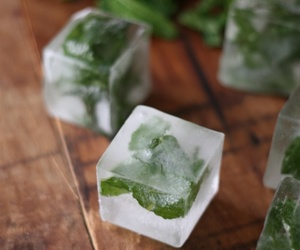 food and mint icecubes image