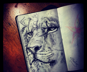 art, lion, and animal image