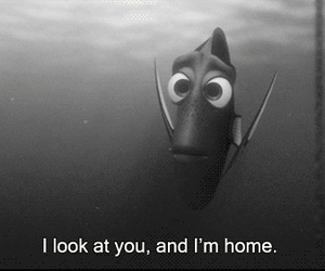 nemo, home, and dory image