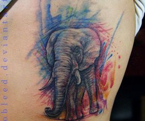 elephant, watercolour, and tattoo image