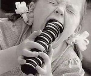 oreo, funny, and Cookies image