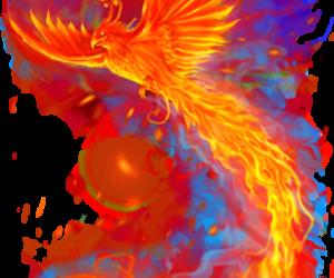 animal, fire, and phoenix image