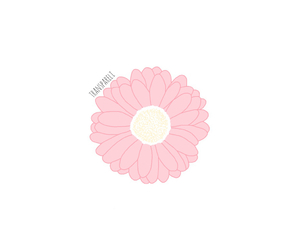 transparent, flowers, and overlay image
