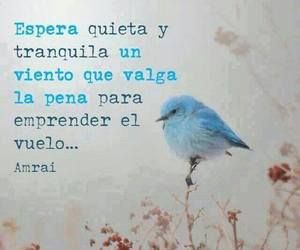 carteles, frases, and quotes image