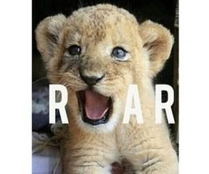 roar, cute, and animal image