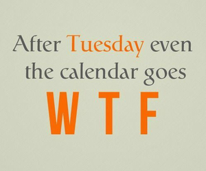wtf, funny, and calendar image