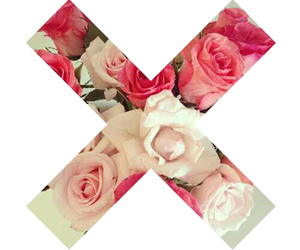 flowers, rose, and x image