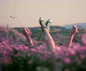 flowers, nature, and converse image