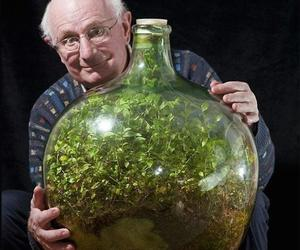 bottle, garden, and nature image