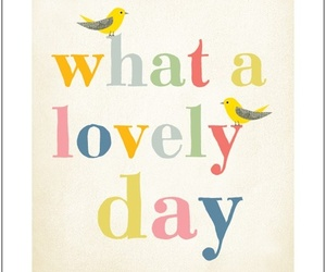 lovely, quote, and bird image
