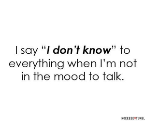 everything, talk, and quotes and sayings image