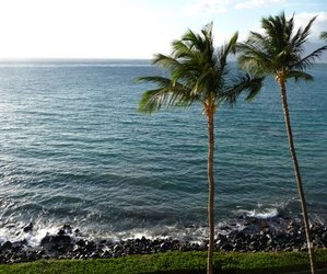 beach, maui, and nature image
