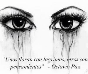 eyes, cry, and octavio paz image