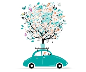 flower, butterfly, and car image