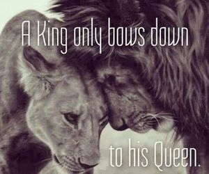 king, Queen, and lion image