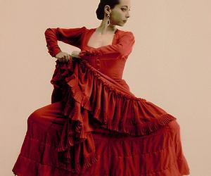 flamenco image