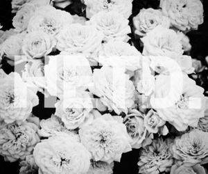 b&w, facebook, and flowers image