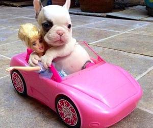 barbie, dog, and car image