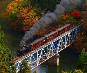 train, autumn, and fall image