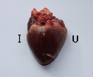 love, heart, and I Love You image