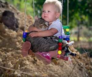animals, cats, and kids image