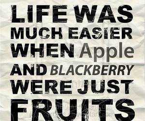 apple, funny quotes, and bb image
