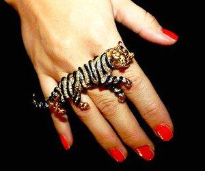 ring, tiger, and nails image