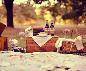 picnic, cute, and flowers image