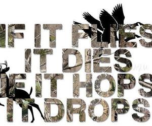 dies, drops, and flies image