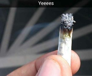 hight, weed, and bedo image