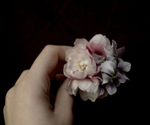 fingers, flower, and hand image