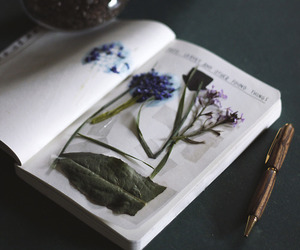 flowers, keri smith, and wreck this journal image