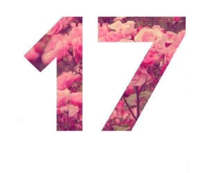 17, roses, and Seventeen image