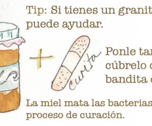 tips and miel image