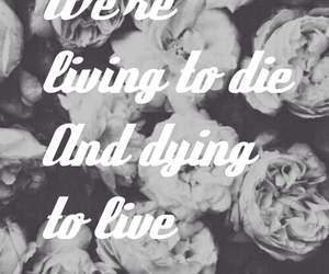 life, yolo, and dying to live image