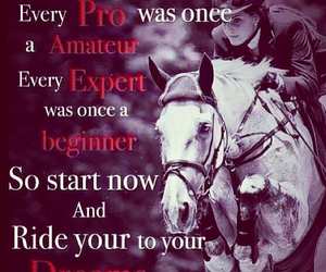 horse, quote, and true image