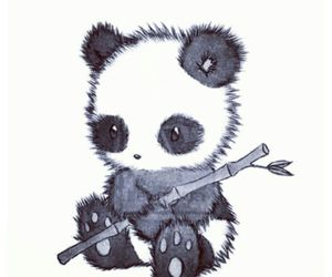 panda, animal, and drawing image