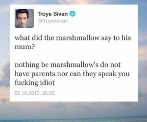 funny and troye sivan image