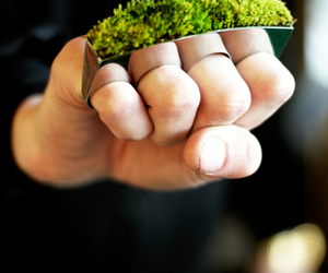 ring, grass, and green image