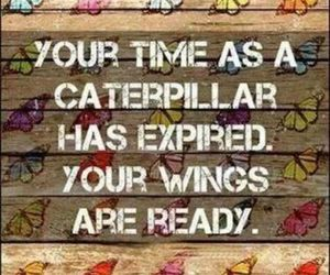 quotes, butterfly, and wings image